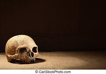 scuro, cranio