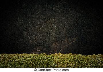 scuro, pietra, fondo
