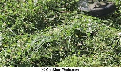 Scythe blade trimmer mows the grass in slow motion. - Scythe...