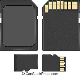 SD and microSD - Vector photorealistic SD and MicroSD cards...