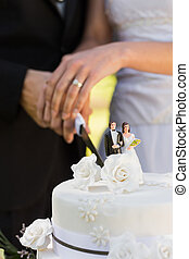 seção, meio, bolo, corte, casório, recém casado