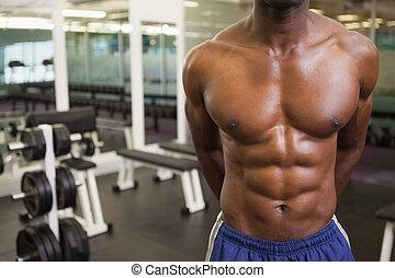 seção, muscular, meio, shirtless, ginásio, homem