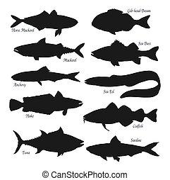 Sea and ocean fish black silhouettes