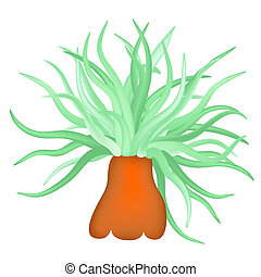 sea anemone - vector - Illustration of the sea anemone - sea...