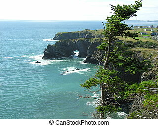 Sea arches on rugged coastline of Newfoundland