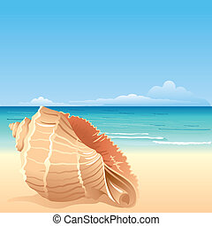 Sea background with shell