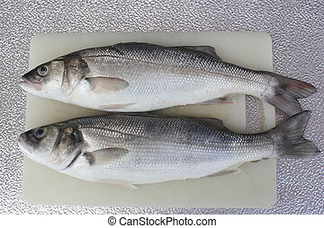 Sea bass - freshly rod caught sea bass, a delicacy of the ...