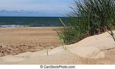 Sea, beach, and grass on sand dune