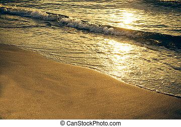 Sea beach in the sunset