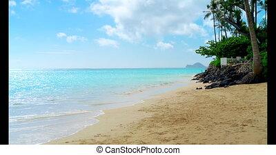 Sea beach on a sunny day 4k