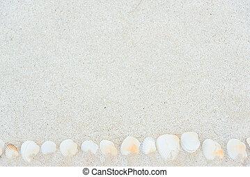 Sea Beach Sand Texture