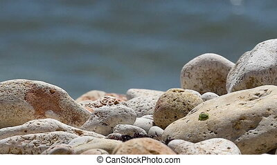 Sea Breeze - Sea pebbles closeup on a background of sea...