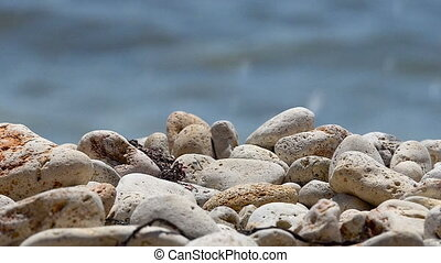Sea Breeze - Sea pebbles closeup on a background of sea...