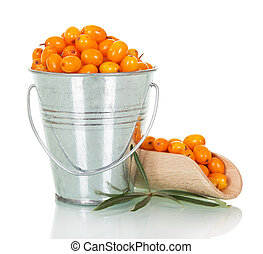 Sea-buckthorn berries in bucket and scoop isolated on white....