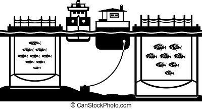 Sea cage fish farming