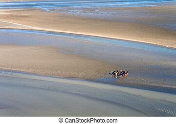 Sea coast at low tide