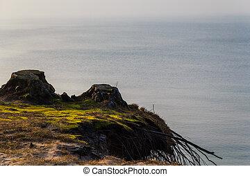 Sea coast autumn spring storms