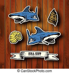 Sea collection.  Hand drawn illustration in vintage style