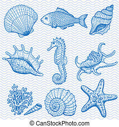 Sea collection. Original hand drawn illustration in vintage...