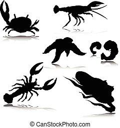 sea crabs vector silhouettes