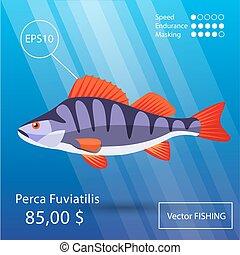 Sea fish illustration - Vector flat perch icon. Tropical...