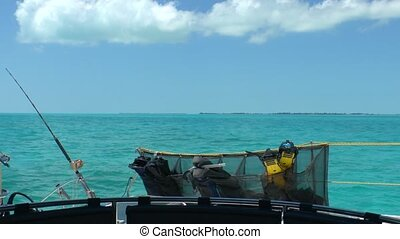 Sea Fishing Rods and Catamaran