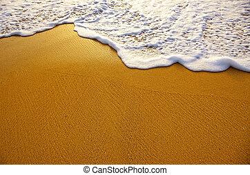 Sea Foam - Closeup of sea foam on wet golden sand with copy...