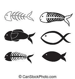 sea food design over white background vector illustration