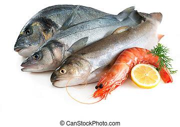 Sea food isolated on white