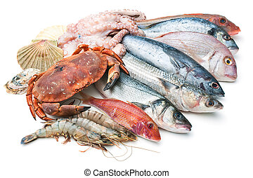 Sea food - Fresh catch of fish and other seafood isolated on...