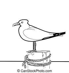 Sea gull sitting on the pier
