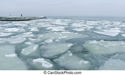 Sea ice excitement.  - High quality and resolution