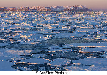Sea Ice - Greenland - Sea ice off the coast of eastern...