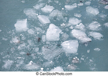 sea ice float on the water