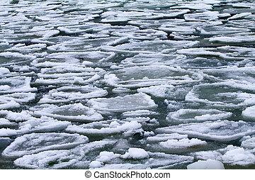 sea ice - forms of sea ice near the coast