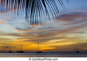 sea;, karaibski, na, zachód słońca, wielki, grenada, bay;, anse
