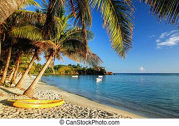 Sea kayak on the beach near palm trees