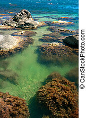 Sea lagoon with red algae on stones - Calm sea lagoon with...