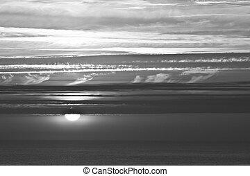 sea landscape summer