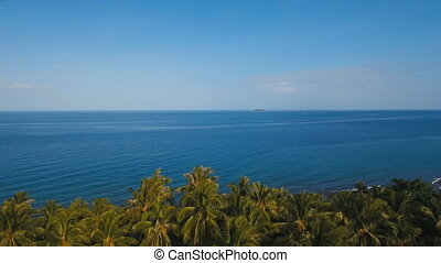 Sea landscape with the sea and palm trees. Aerial view:Camiguin island Philippines.