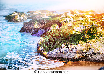 Sea landscape with waves hitting rocky beach