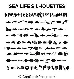 Sea life collection - vector illustration
