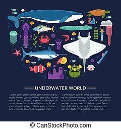 Sea Life Concept Card