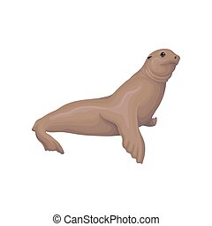 Sea lion animal vector Illustration on a white background