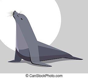 Sea lion basking in the sun