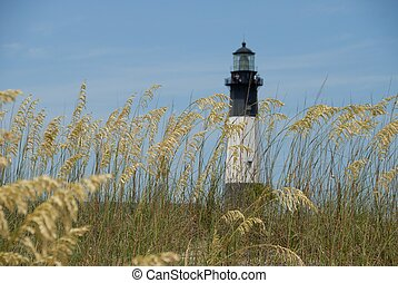 Sea Oats with lighthouse in the background at Tybee Island Georgia USA