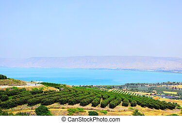Sea of Galilee (Lake Kinneret) and Golan Heights in the background. Israel