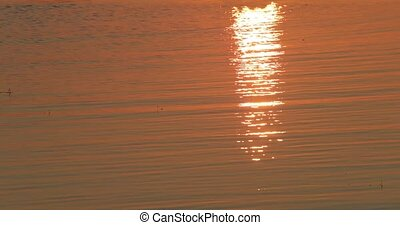 sea on a sunset background and reflection of rays in the water