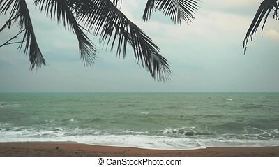 Sea palm tree and shore during storm weather in slow motion.