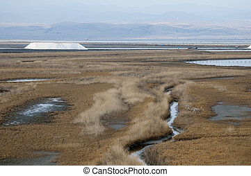 Sea ??saltern. Ponds for salt production